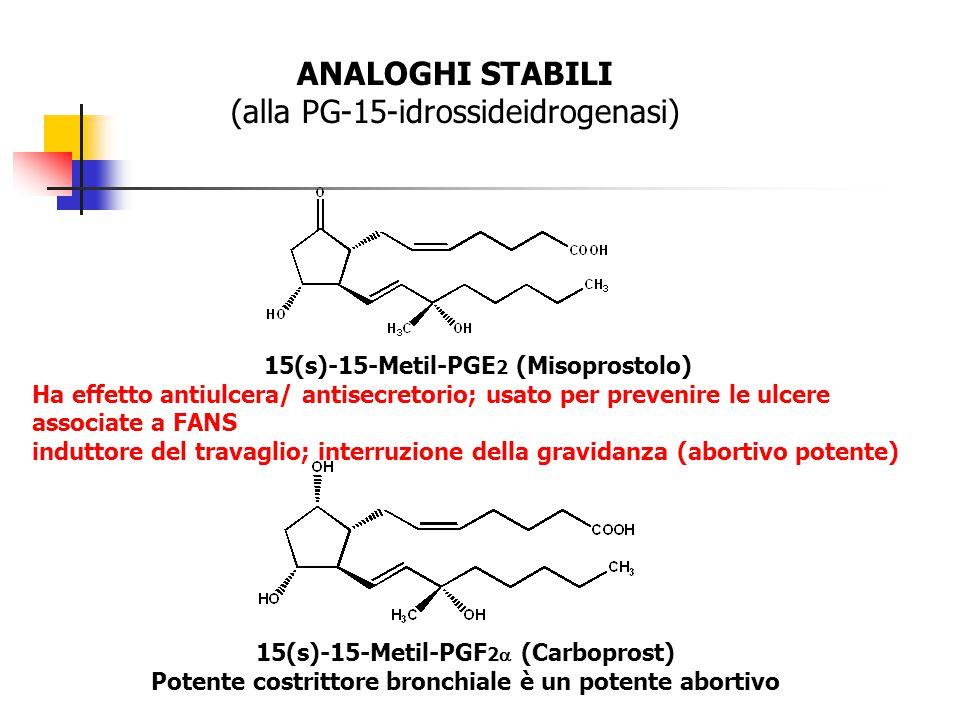 ANALOGHI STABILI (alla PG-15-idrossideidrogenasi) 15(s)-15-Metil-PGE 2 (Misoprostolo) Ha effetto antiulcera/ antisecretorio; usato per prevenire le ul