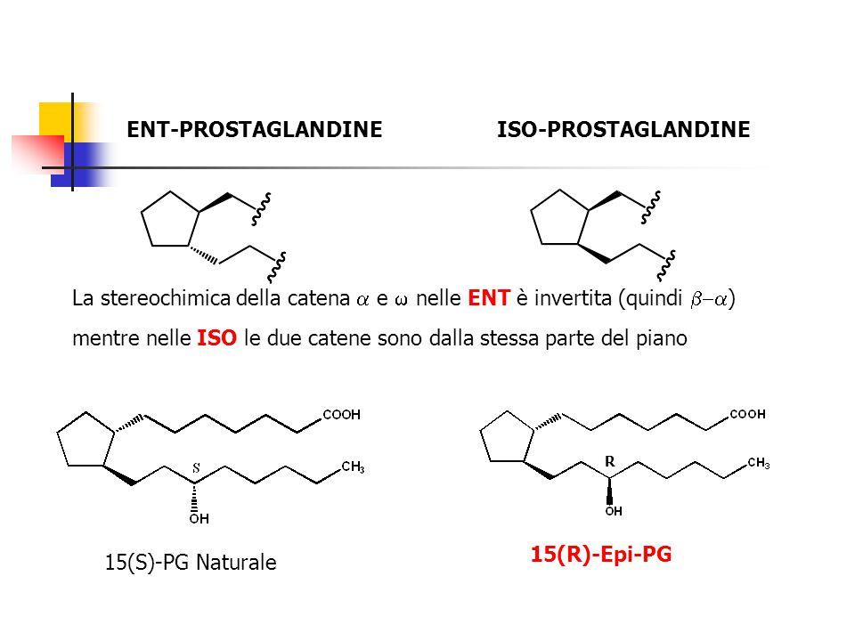 ENT-PROSTAGLANDINEISO-PROSTAGLANDINE La stereochimica della catena  e  nelle ENT è invertita (quindi  ) mentre nelle ISO le due catene sono dalla