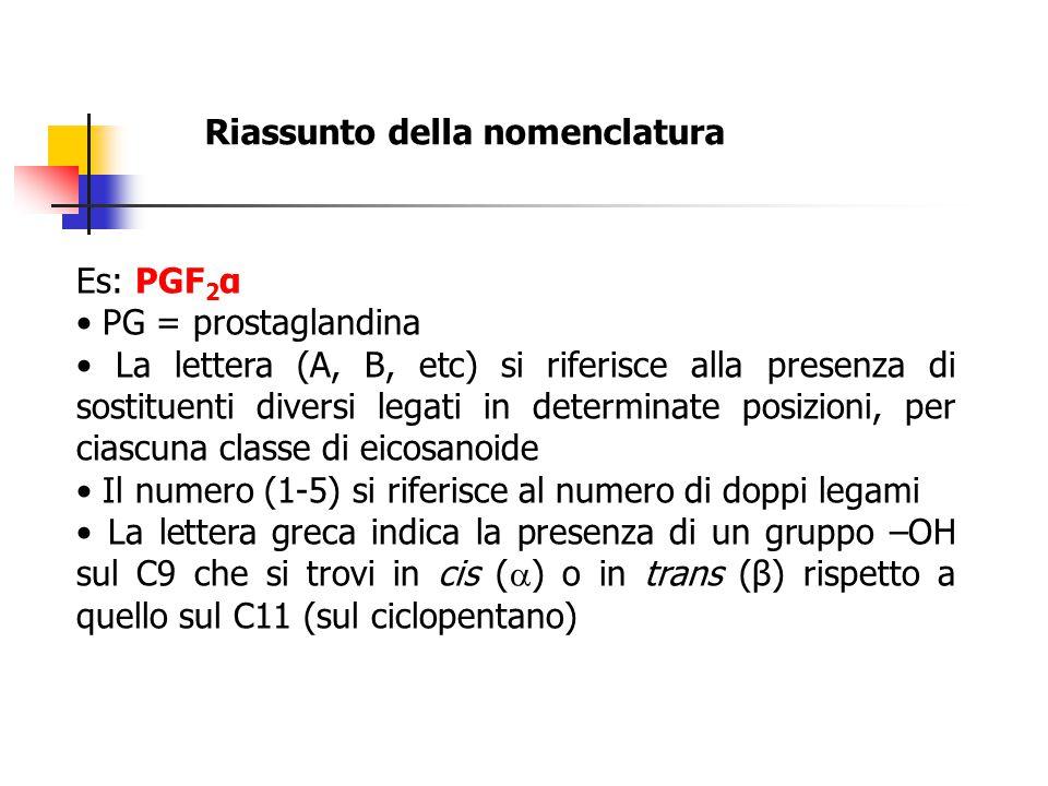 Riassunto della nomenclatura Es: PGF 2 α PG = prostaglandina La lettera (A, B, etc) si riferisce alla presenza di sostituenti diversi legati in determ