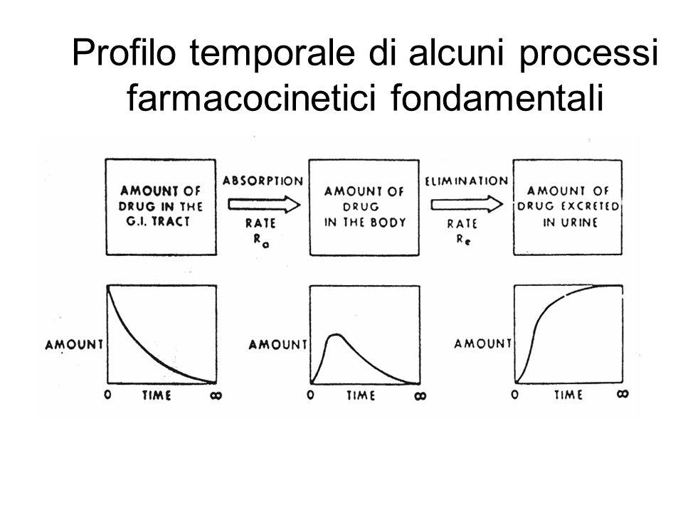 Profilo temporale di alcuni processi farmacocinetici fondamentali