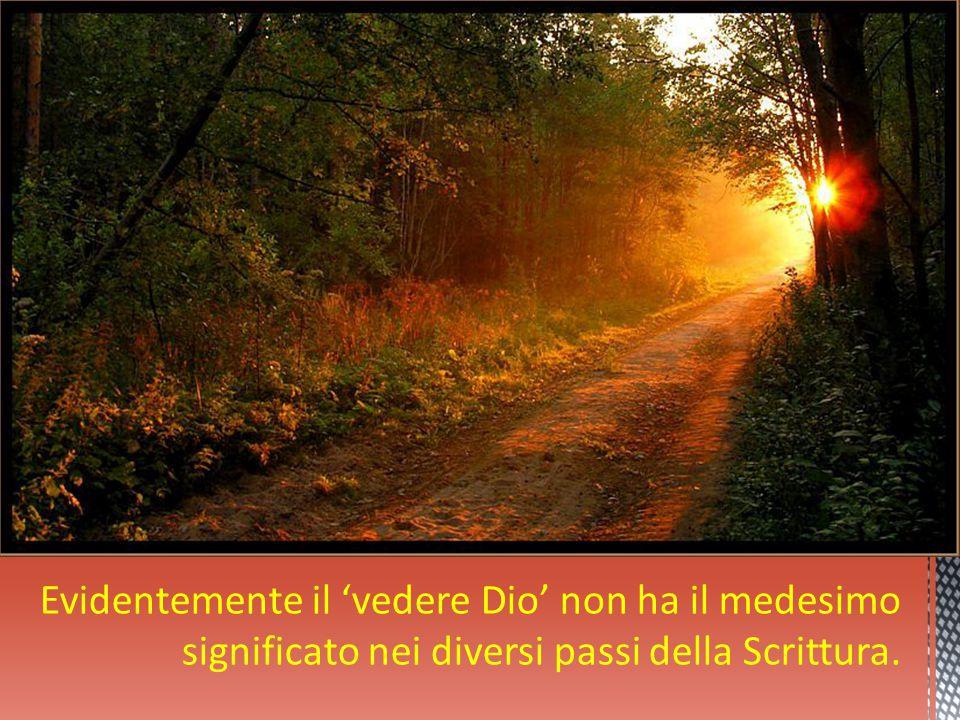 Evidentemente il 'vedere Dio' non ha il medesimo significato nei diversi passi della Scrittura.