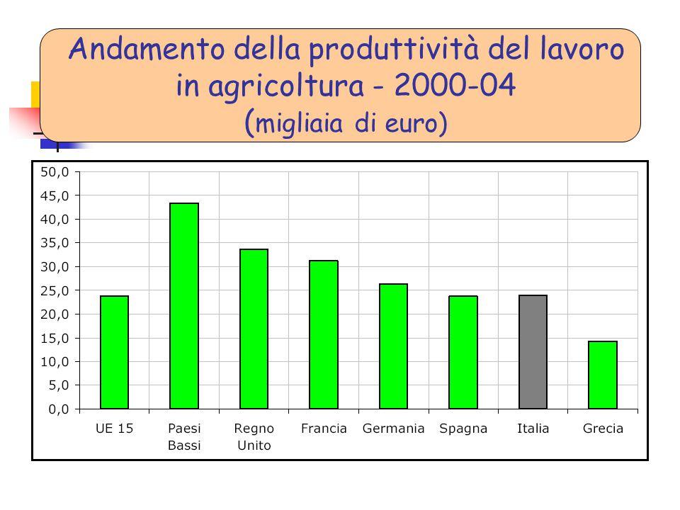 Andamento della produttività del lavoro in agricoltura - 2000-04 ( migliaia di euro)
