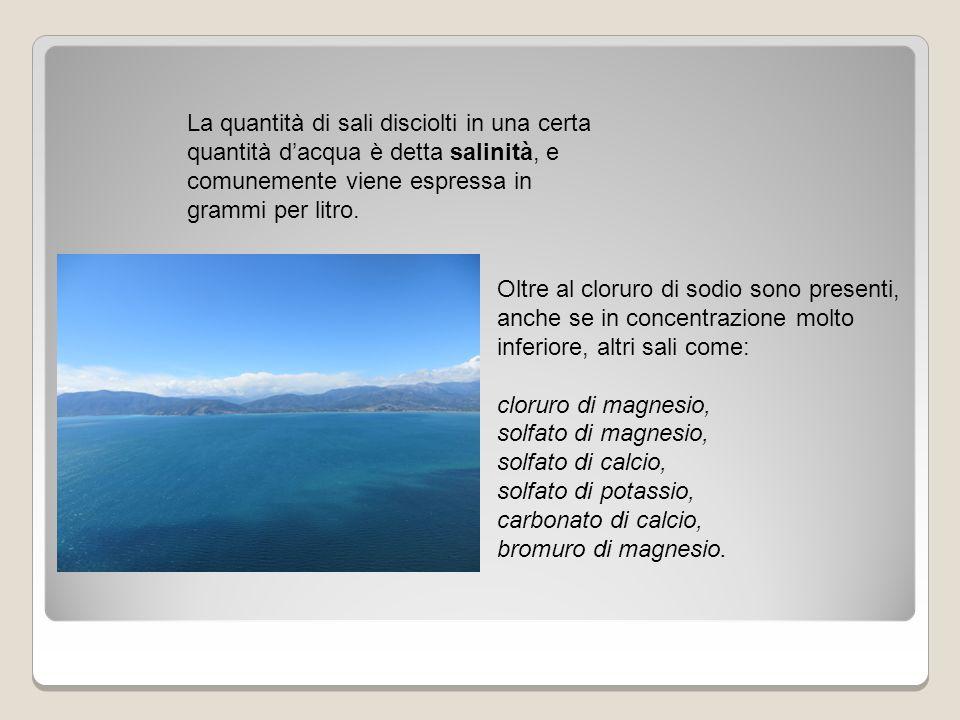 La salinità delle acque varia soprattutto in relazione alla profondità, alla temperatura dell'acqua e alla evaporazione.