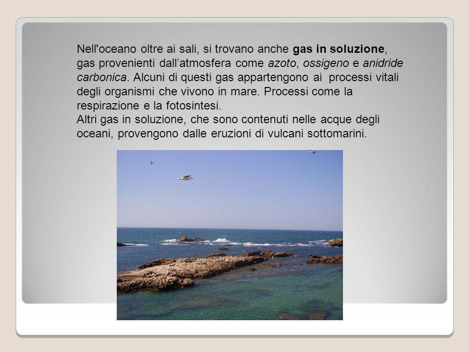 Nell'oceano oltre ai sali, si trovano anche gas in soluzione, gas provenienti dall'atmosfera come azoto, ossigeno e anidride carbonica. Alcuni di ques