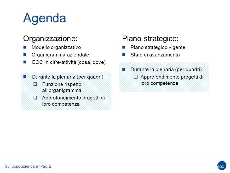 Piano strategico EOC 2013-2017 Sviluppo aziendale / Pag. 13