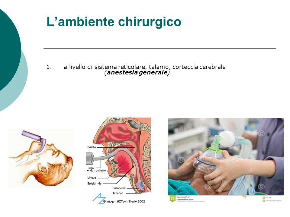 L'ambiente chirurgico 1.a livello di sistema reticolare, talamo, corteccia cerebrale (anestesia generale)
