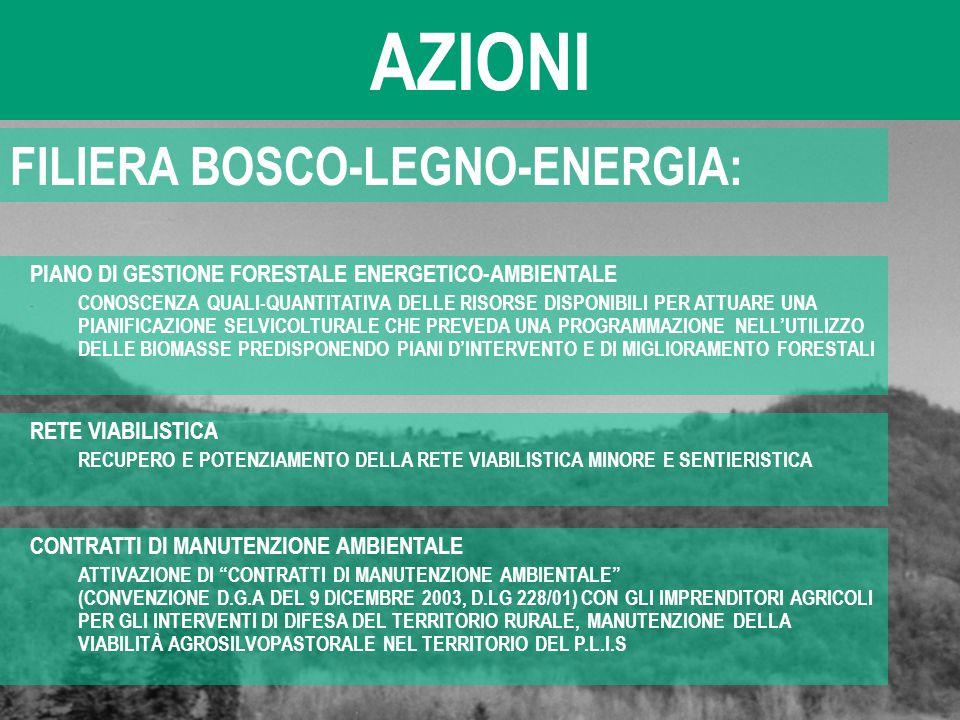 AZIONI FILIERA BOSCO-LEGNO-ENERGIA: PIANO DI GESTIONE FORESTALE ENERGETICO-AMBIENTALE - CONOSCENZA QUALI-QUANTITATIVA DELLE RISORSE DISPONIBILI PER AT