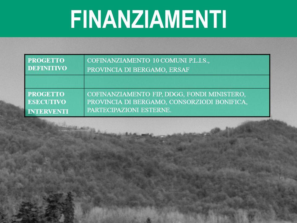 FINANZIAMENTI PROGETTO DEFINITIVO COFINANZIAMENTO 10 COMUNI P.L.I.S., PROVINCIA DI BERGAMO, ERSAF PROGETTO ESECUTIVO INTERVENTI COFINANZIAMENTO FIP, D
