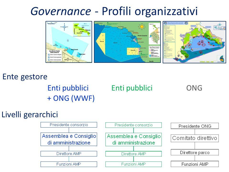 Governance - Profili organizzativi Ente gestore Enti pubblici Enti pubblici ONG + ONG (WWF) Livelli gerarchici 13