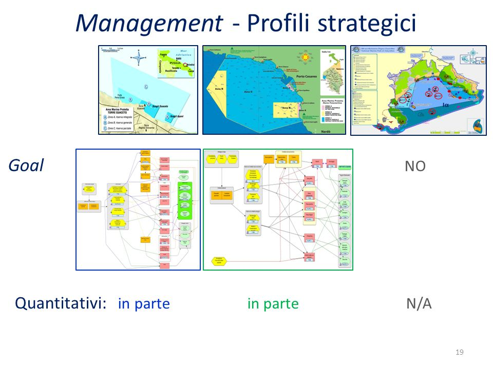 Goal NO Quantitativi: in parte in parte N/A 19 Management - Profili strategici