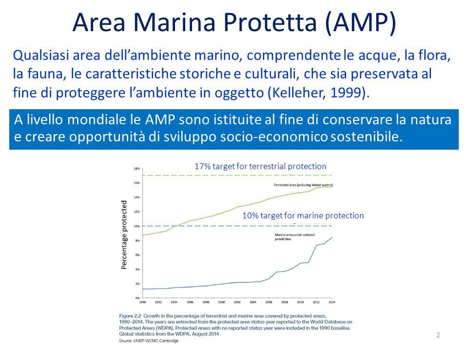 Area Marina Protetta (AMP) Qualsiasi area dell'ambiente marino, comprendente le acque, la flora, la fauna, le caratteristiche storiche e culturali, che sia preservata al fine di proteggere l'ambiente in oggetto (Kelleher, 1999).