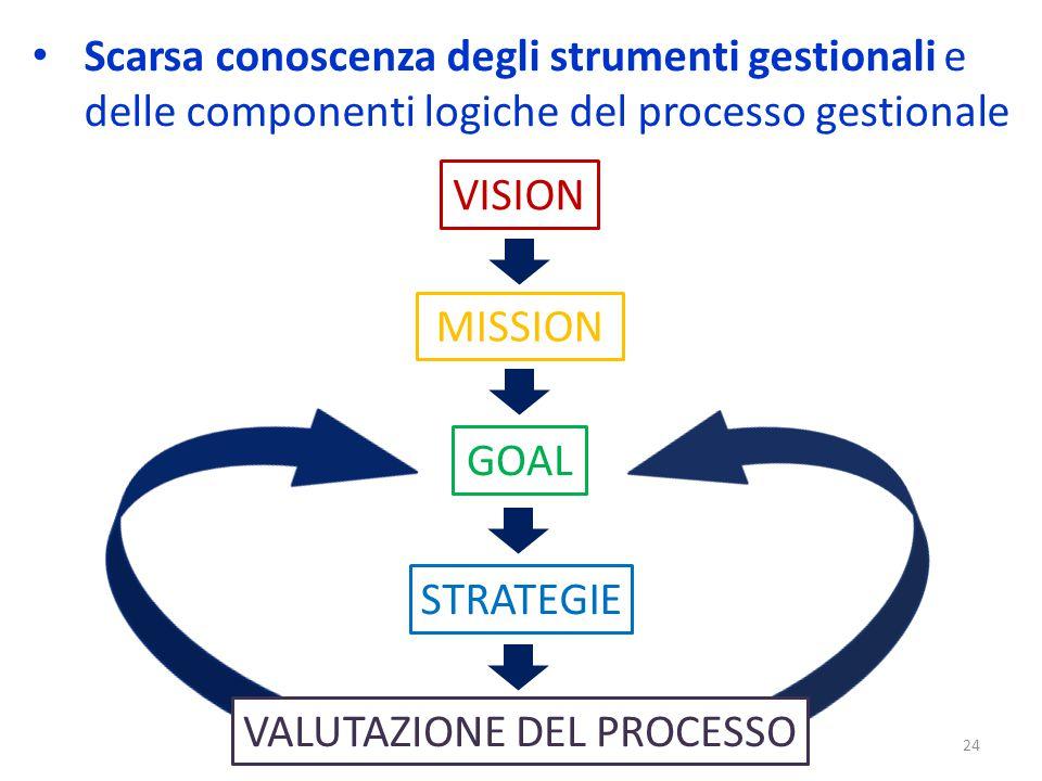 Scarsa conoscenza degli strumenti gestionali e delle componenti logiche del processo gestionale 24 VISION MISSION GOAL STRATEGIE VALUTAZIONE DEL PROCESSO