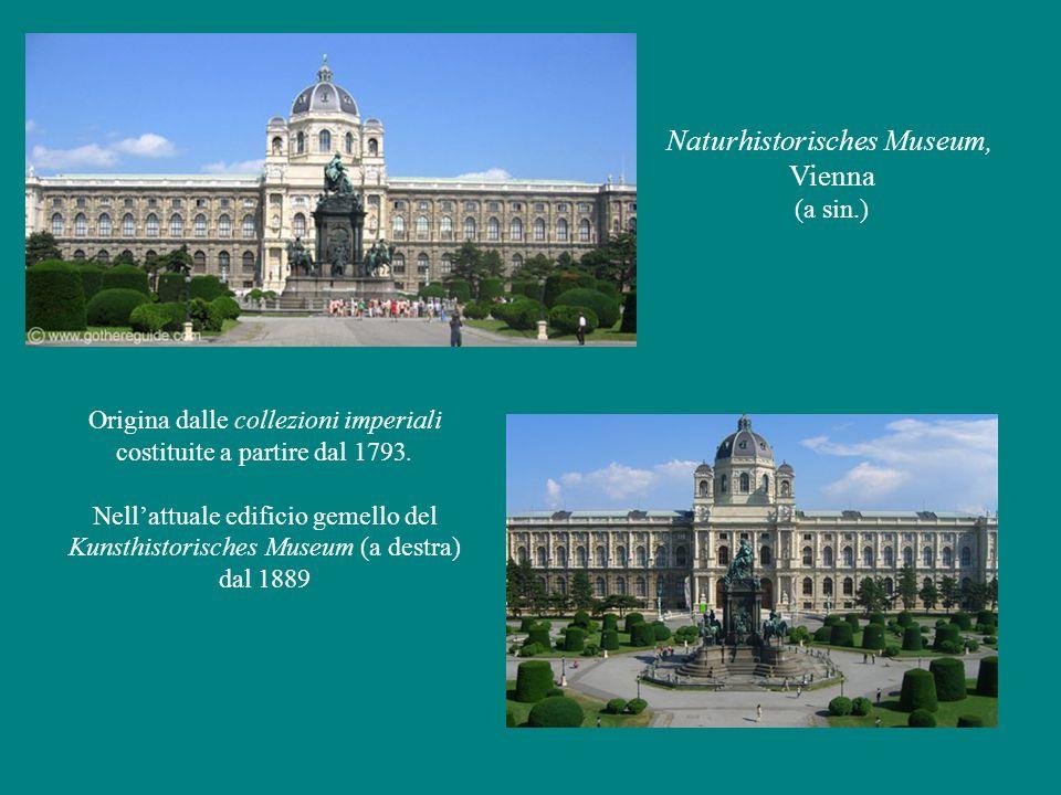 Naturhistorisches Museum, Vienna (a sin.) Origina dalle collezioni imperiali costituite a partire dal 1793.