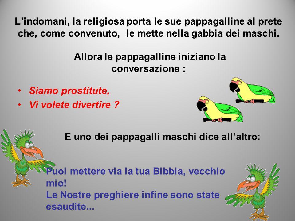 L'indomani, la religiosa porta le sue pappagalline al prete che, come convenuto, le mette nella gabbia dei maschi.