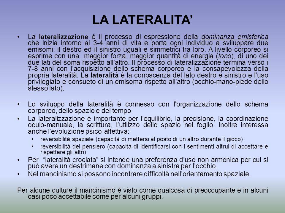 LA LATERALITA' La lateralizzazione è il processo di espressione della dominanza emisferica che inizia intorno ai 3-4 anni di vita e porta ogni individuo a sviluppare due emisomi: il destro ed il sinistro uguali e simmetrici tra loro.