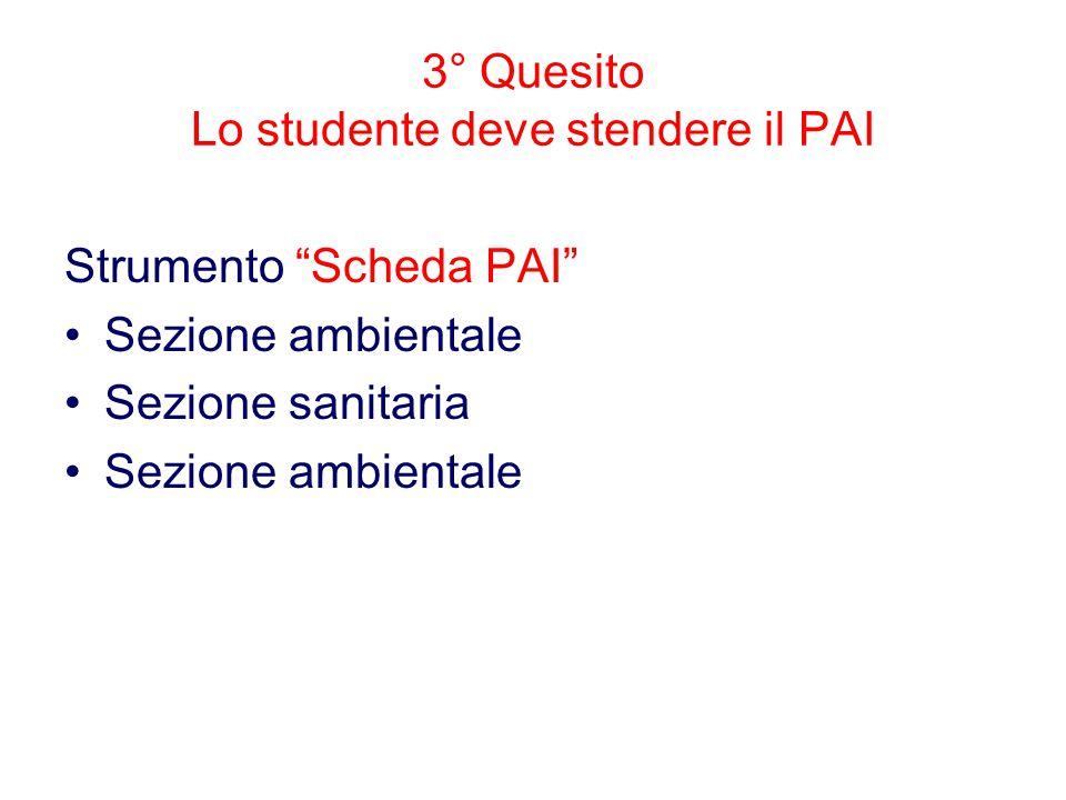 3° Quesito Lo studente deve stendere il PAI Strumento Scheda PAI Sezione ambientale Sezione sanitaria Sezione ambientale