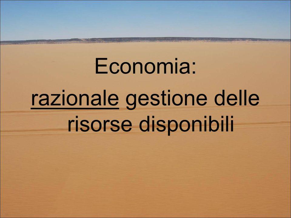 Economia: razionale gestione delle risorse disponibili
