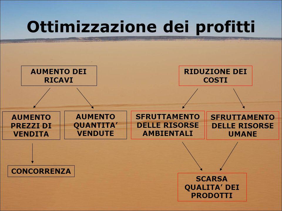 Ottimizzazione dei profitti AUMENTO DEI RICAVI AUMENTO PREZZI DI VENDITA AUMENTO QUANTITA' VENDUTE CONCORRENZA RIDUZIONE DEI COSTI SCARSA QUALITA' DEI PRODOTTI SFRUTTAMENTO DELLE RISORSE UMANE SFRUTTAMENTO DELLE RISORSE AMBIENTALI
