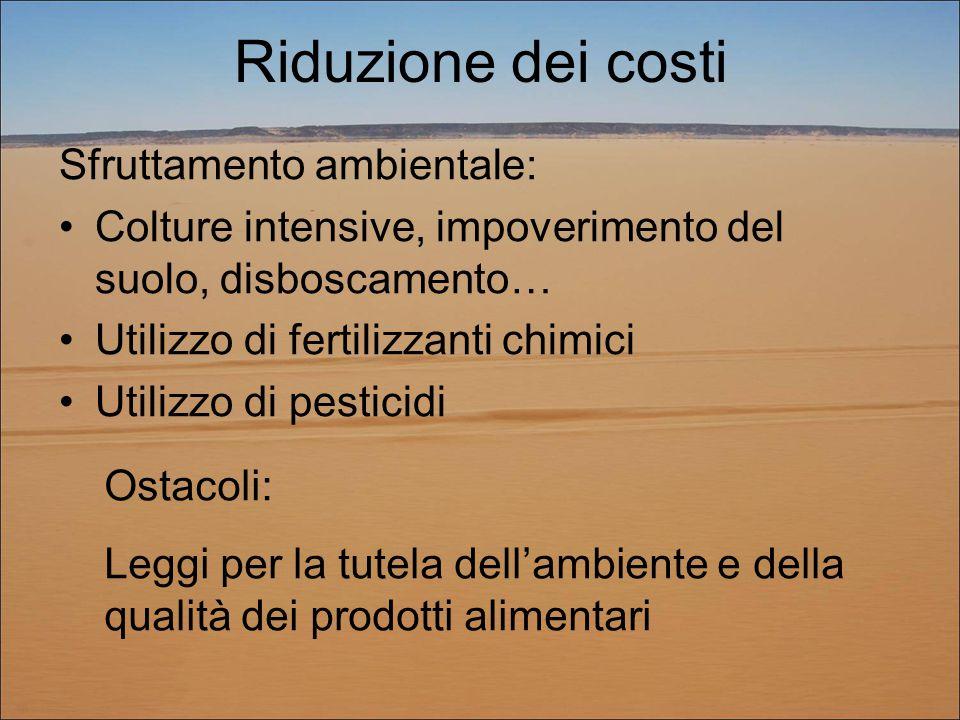 Riduzione dei costi Sfruttamento ambientale: Colture intensive, impoverimento del suolo, disboscamento… Utilizzo di fertilizzanti chimici Utilizzo di