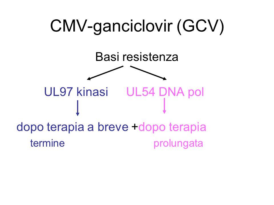 CMV-ganciclovir (GCV) Basi resistenza UL97 kinasiUL54 DNA pol dopo terapia a breve +dopo terapia termineprolungata