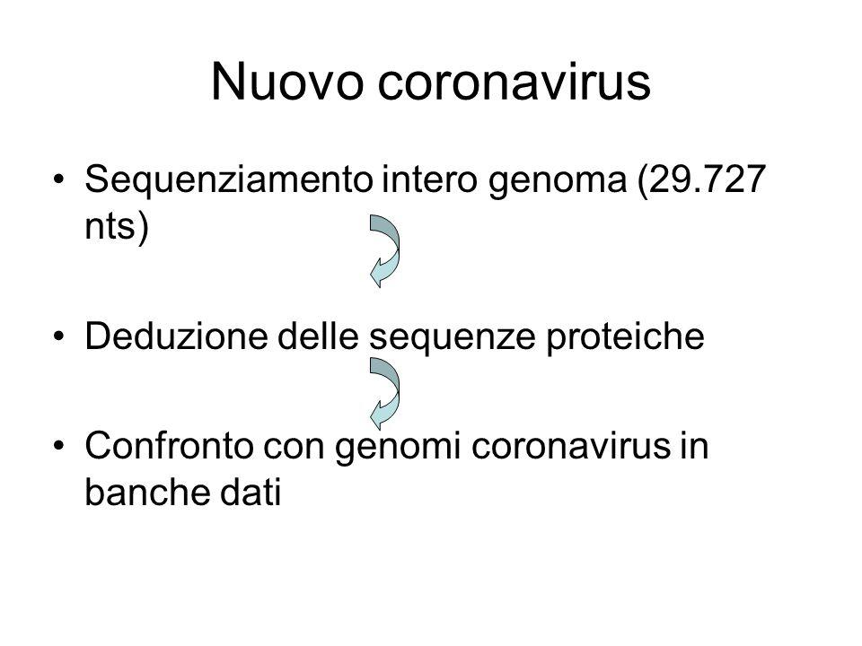 Nuovo coronavirus Sequenziamento intero genoma (29.727 nts) Deduzione delle sequenze proteiche Confronto con genomi coronavirus in banche dati