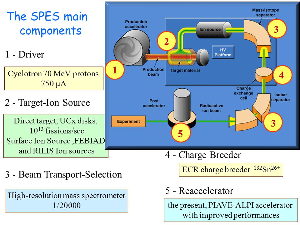 The SPES main components 1 - Driver 2 - Target-Ion Source 3 - Beam Transport-Selection Cyclotron 70 MeV protons 750  A Direct target, UCx disks, 10 13 fissions/sec Surface Ion Source,FEBIAD and RILIS Ion sources High-resolution mass spectrometer 1/20000 ECR charge breeder 132 Sn 26+ the present, PIAVE-ALPI accelerator with improved performances 4 - Charge Breeder 5 - Reaccelerator 1 2 3 3 4 5