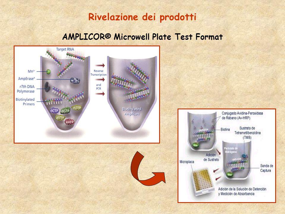 Rivelazione dei prodotti AMPLICOR® Microwell Plate Test Format