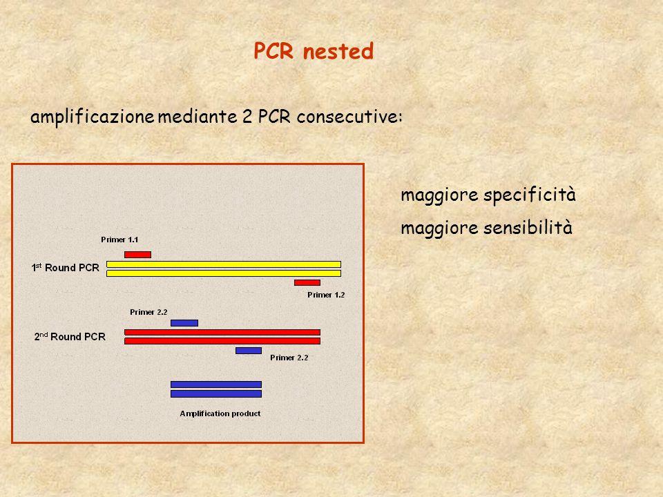 PCR nested maggiore specificità maggiore sensibilità amplificazione mediante 2 PCR consecutive: