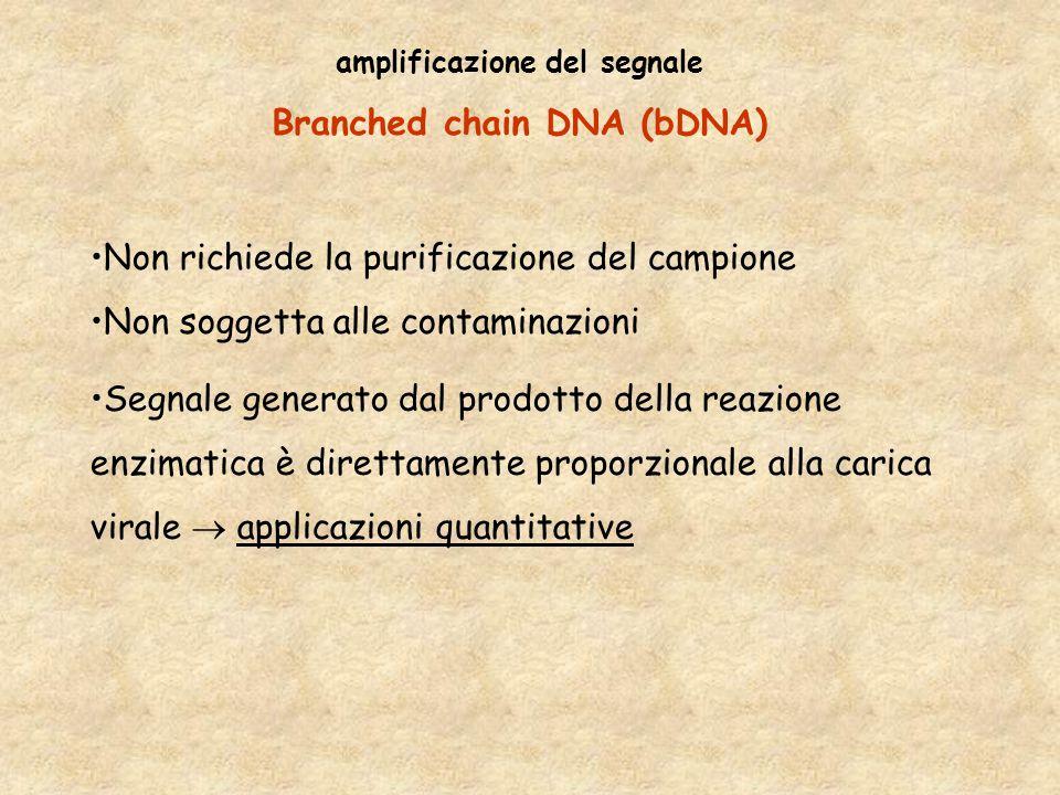 amplificazione del segnale Branched chain DNA (bDNA) Non richiede la purificazione del campione Non soggetta alle contaminazioni Segnale generato dal prodotto della reazione enzimatica è direttamente proporzionale alla carica virale  applicazioni quantitative