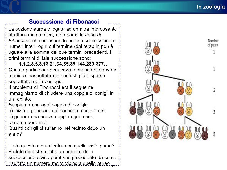 10 La sezione aurea è legata ad un altra interessante struttura matematica, nota come la serie di Fibonacci, che corrisponde ad una successione di num