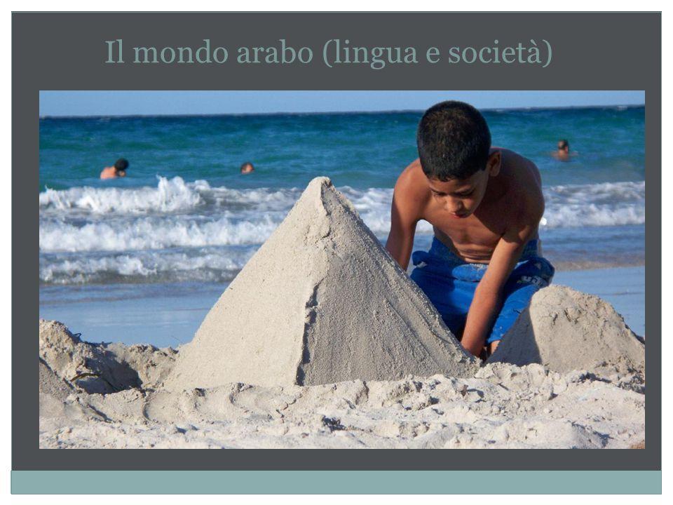 Il mondo arabo (lingua e società)