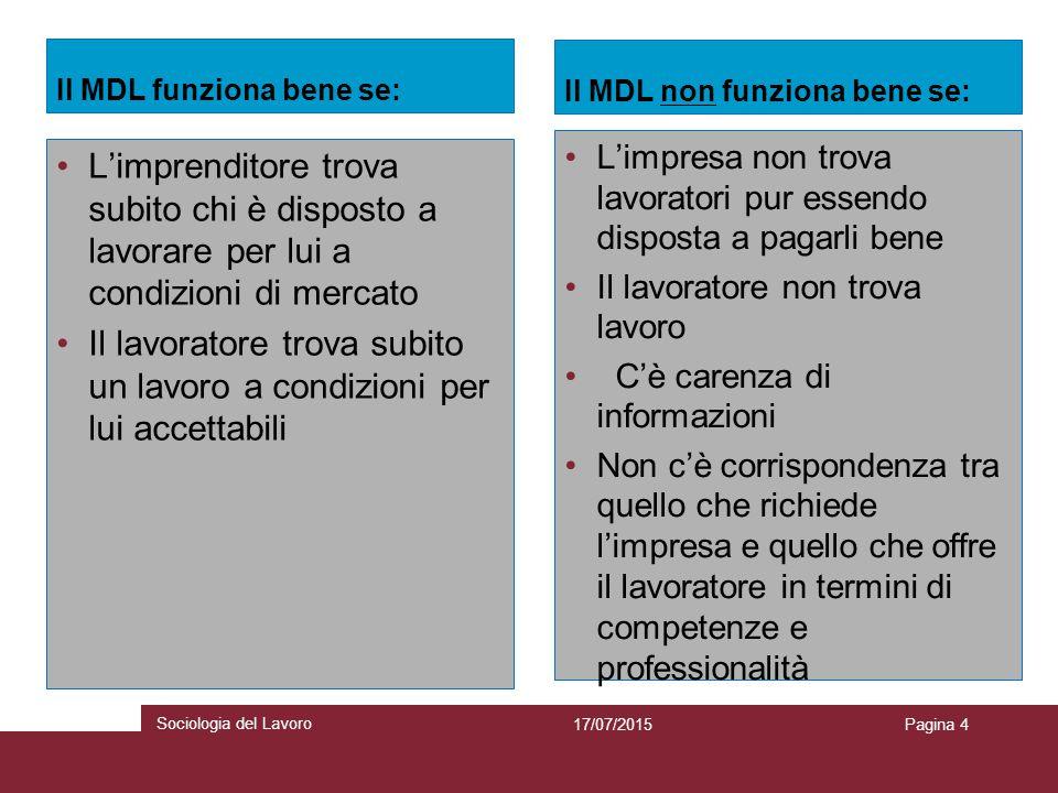 Indicatori per l'analisi del MDL Strumenti indispensabili per una comprensione accurata del MDL e per l'individuazione delle variabili che influenzano l'occupazione.