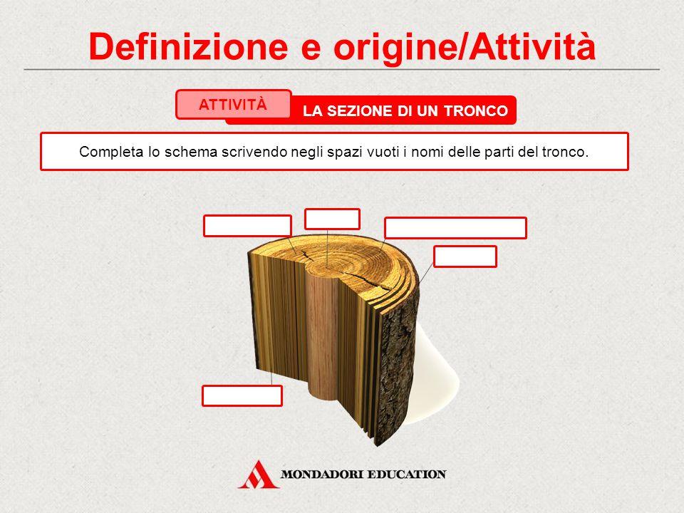 1. Definizione e origine La composizione del legno Principali componenti del legno NomePercentuale % Cellulosa Emicellulosa Lignina Altri componenti: