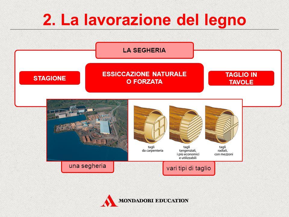 2. La lavorazione del legno Il ciclo produttivo ABBATTIMENTO DELL'ALBERO SRAMATURA E SCORTECCIATURA TRASPORTO