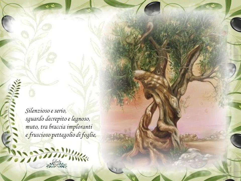 Poesia di Federico Lombardi Premiata al concorso di poesia nazionale Montepagano, il borgo della poesia , comune di Roseto degli Abruzzi.