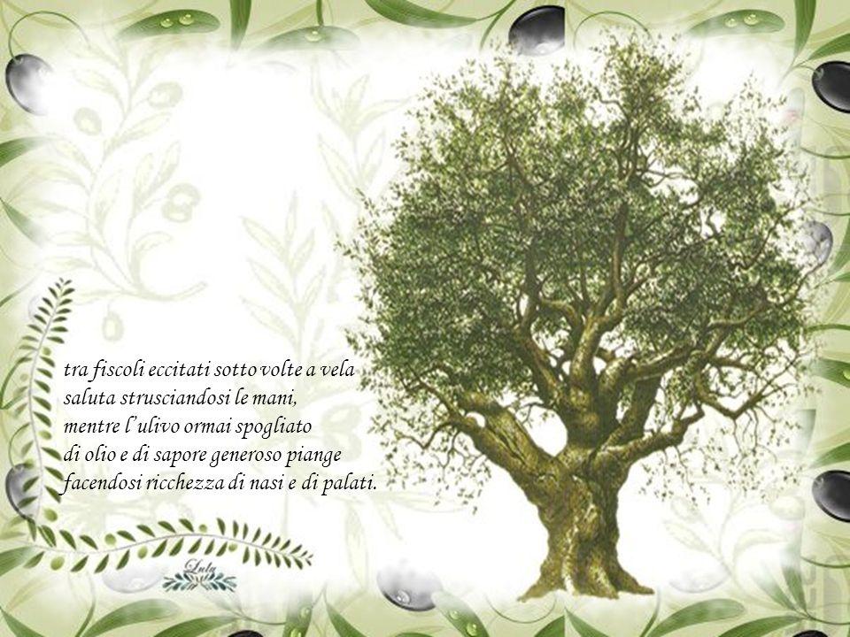 L'esercito di olive, ormai arreso, percorre silenzioso lo sterrato diretto al suo frantoio di contrada che il contadino impolverato di terriccio