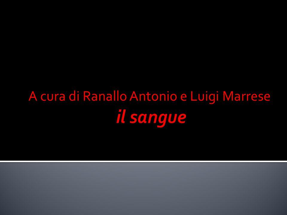 A cura di Ranallo Antonio e Luigi Marrese