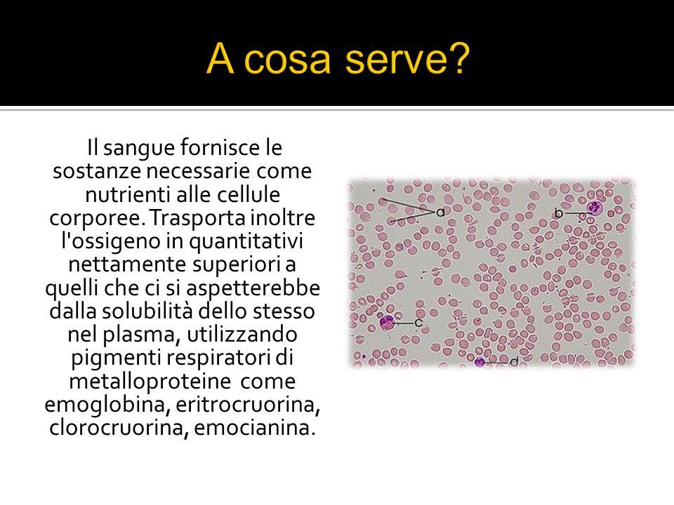 Il sangue fornisce le sostanze necessarie come nutrienti alle cellule corporee.