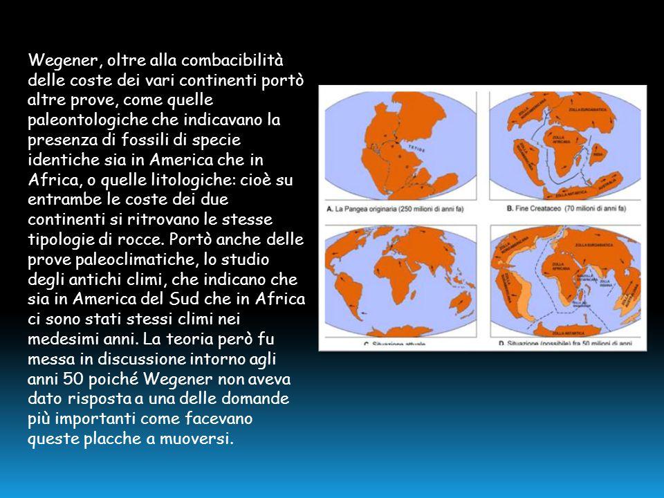 Wegener, oltre alla combacibilità delle coste dei vari continenti portò altre prove, come quelle paleontologiche che indicavano la presenza di fossili