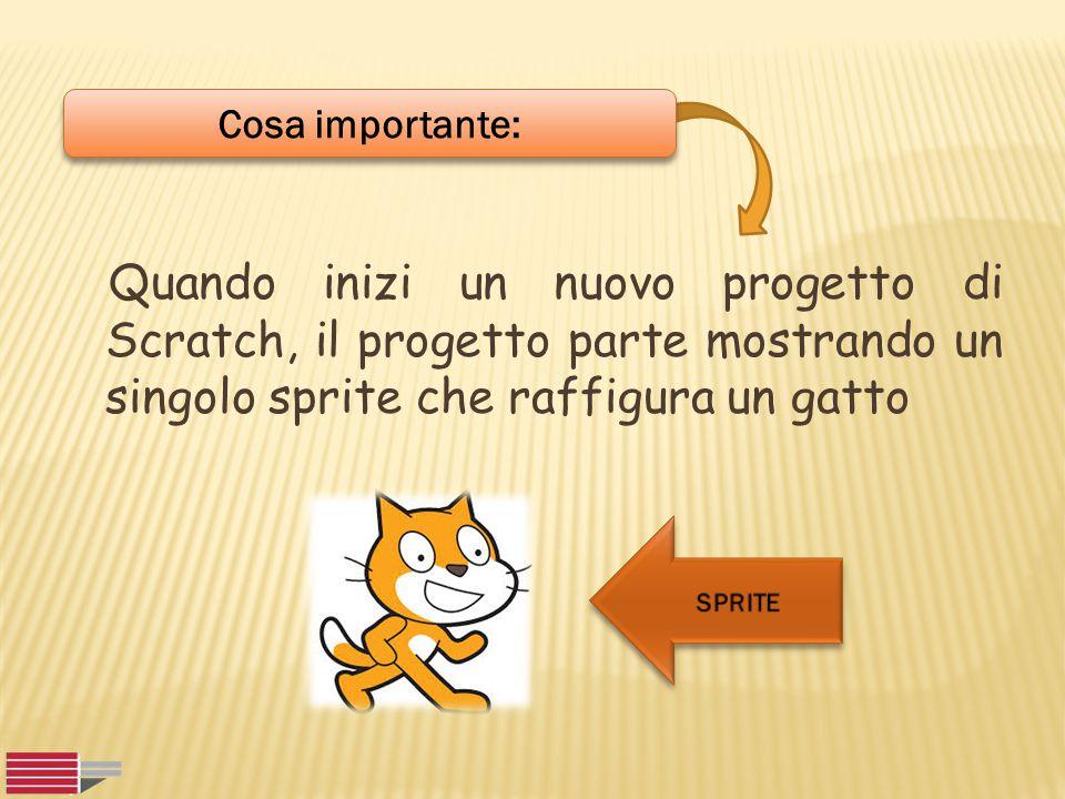 Quando inizi un nuovo progetto di Scratch, il progetto parte mostrando un singolo sprite che raffigura un gatto Cosa importante: