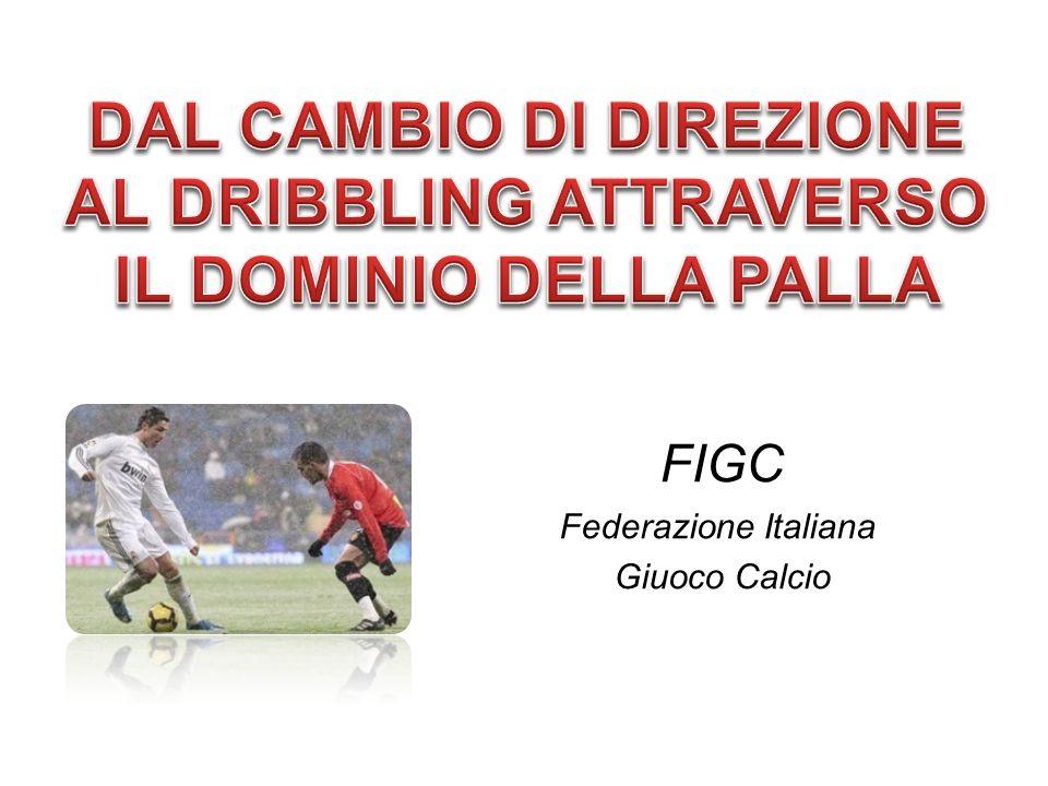 FIGC Federazione Italiana Giuoco Calcio