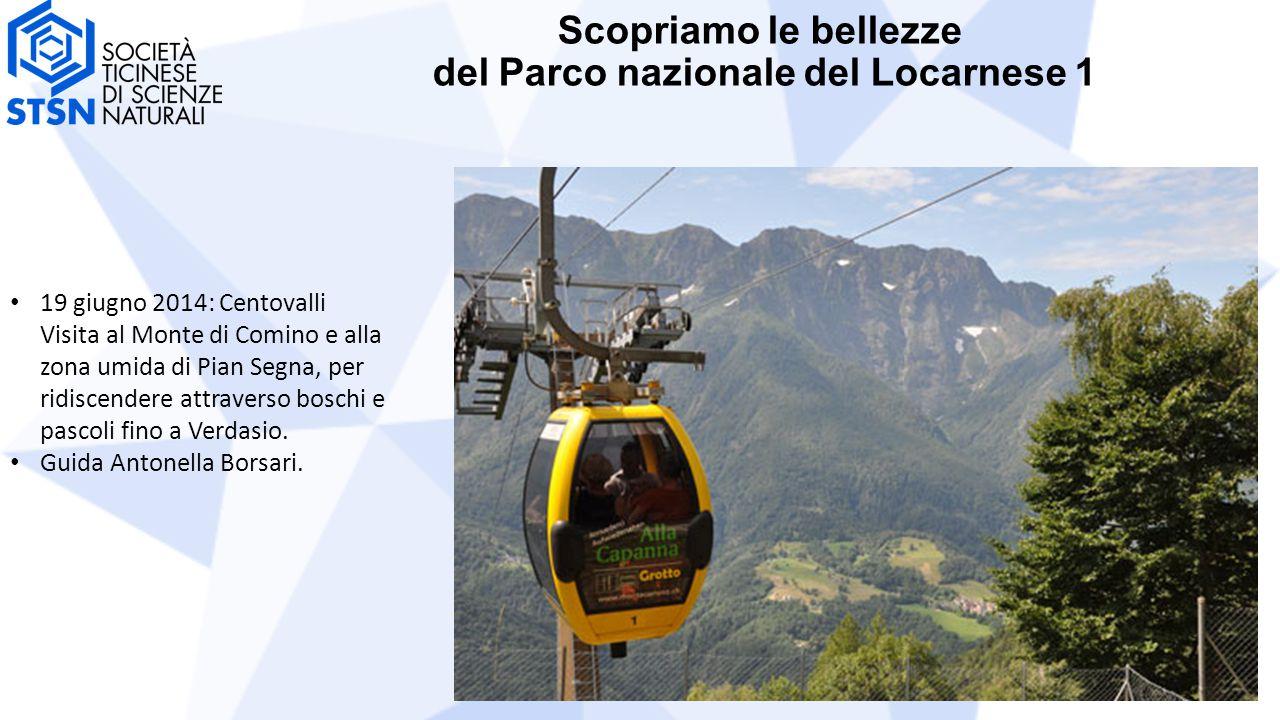 Scopriamo le bellezze del Parco nazionale del Locarnese 1 19 giugno 2014: Centovalli Visita al Monte di Comino e alla zona umida di Pian Segna, per ridiscendere attraverso boschi e pascoli fino a Verdasio.