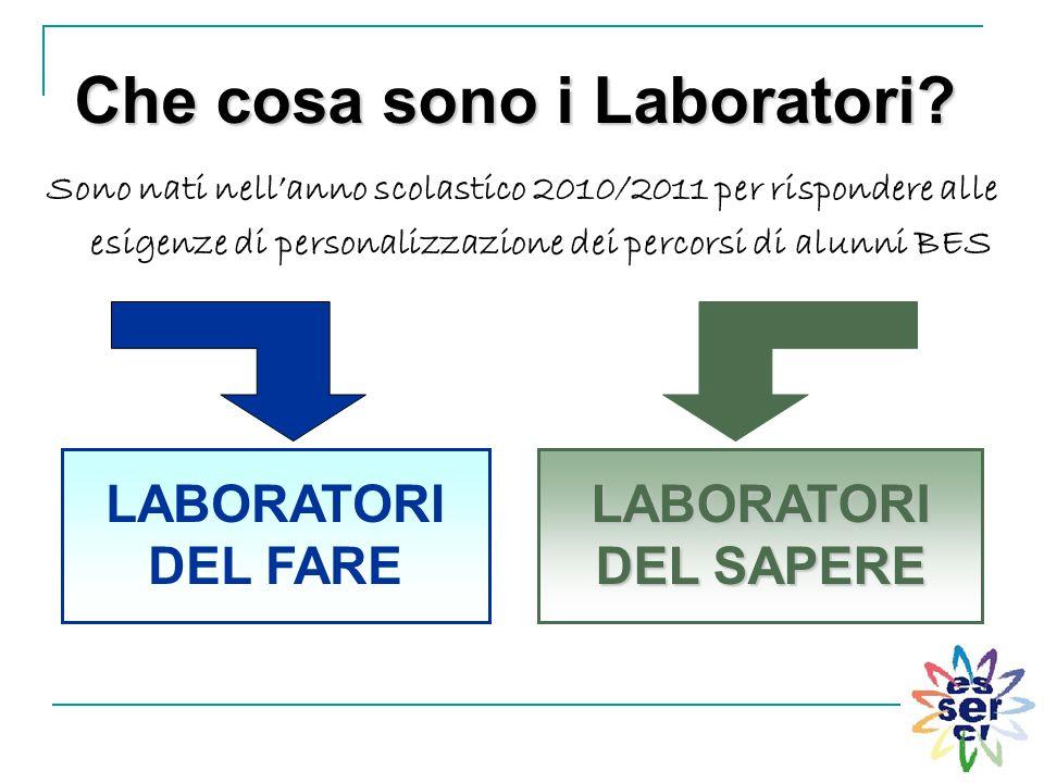 Che cosa sono i Laboratori? Sono nati nell'anno scolastico 2010/2011 per rispondere alle esigenze di personalizzazione dei percorsi di alunni BES LABO