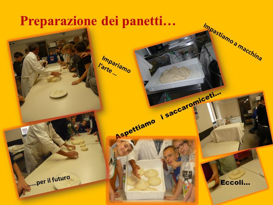 Preparazione dei panetti… Impastiamo a macchina Impariamo l'arte … ……per il futuro Aspettiamo i saccaromiceti… Eccoli…