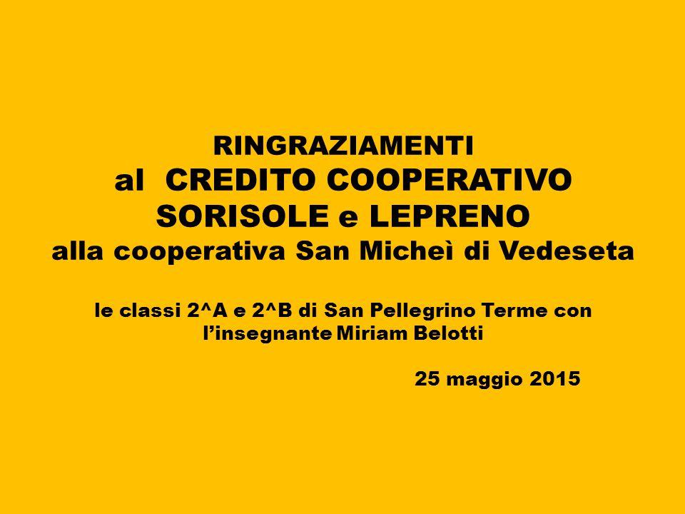 RINGRAZIAMENTI al CREDITO COOPERATIVO SORISOLE e LEPRENO alla cooperativa San Micheì di Vedeseta le classi 2^A e 2^B di San Pellegrino Terme con l'insegnante Miriam Belotti 25 maggio 2015