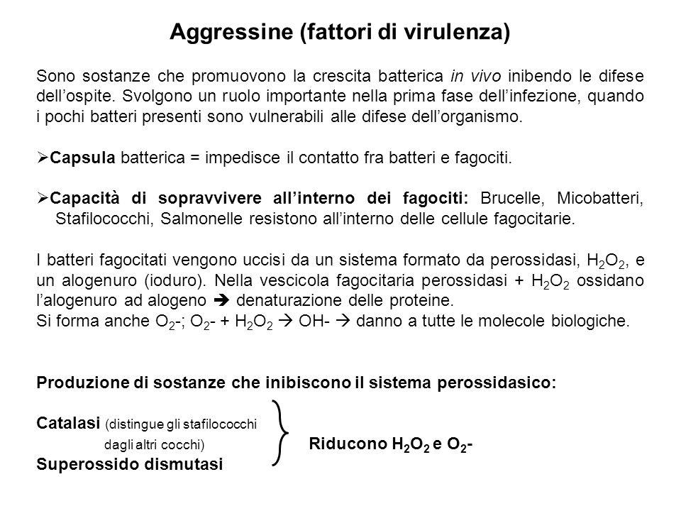 Aggressine (fattori di virulenza) Sono sostanze che promuovono la crescita batterica in vivo inibendo le difese dell'ospite. Svolgono un ruolo importa