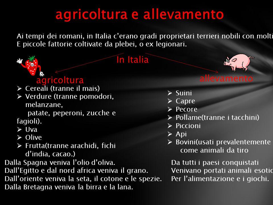 agricoltura e allevamento Ai tempi dei romani, in Italia c'erano gradi proprietari terrieri nobili con molti sciavi E piccole fattorie coltivate da pl
