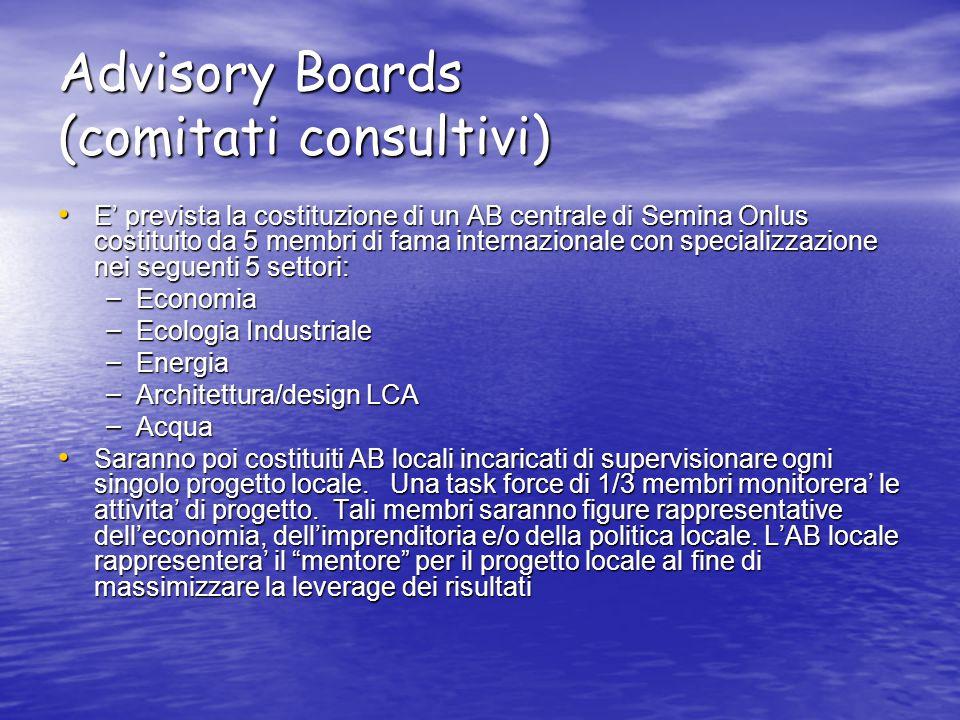 Advisory Boards (comitati consultivi) E' prevista la costituzione di un AB centrale di Semina Onlus costituito da 5 membri di fama internazionale con