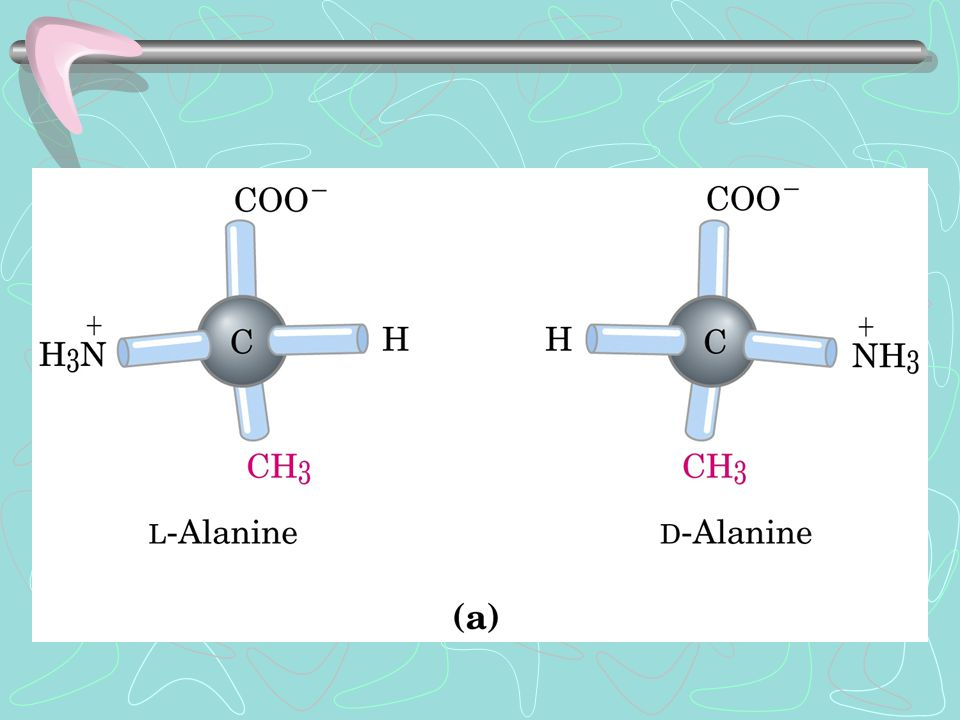 Struttura quaternaria: la proteina è formata da più catene polipeptidiche (subunità) unite con lo stesso tipo di legami che stabilizzano le struttura terziaria.
