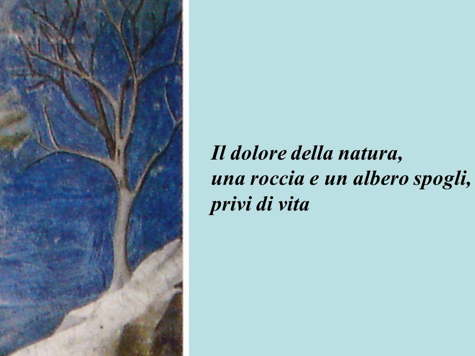 Il dolore della natura, una roccia e un albero spogli, privi di vita